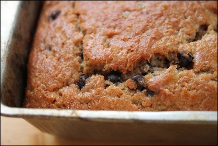 Gingered Applesauce Cake with Dark Chocolate