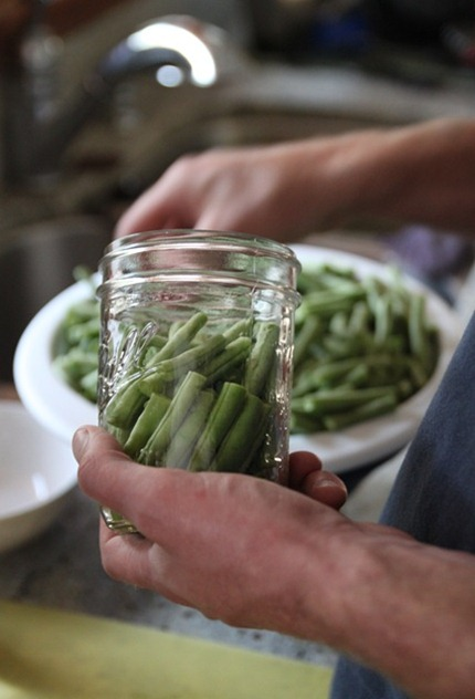 canning_green_beans