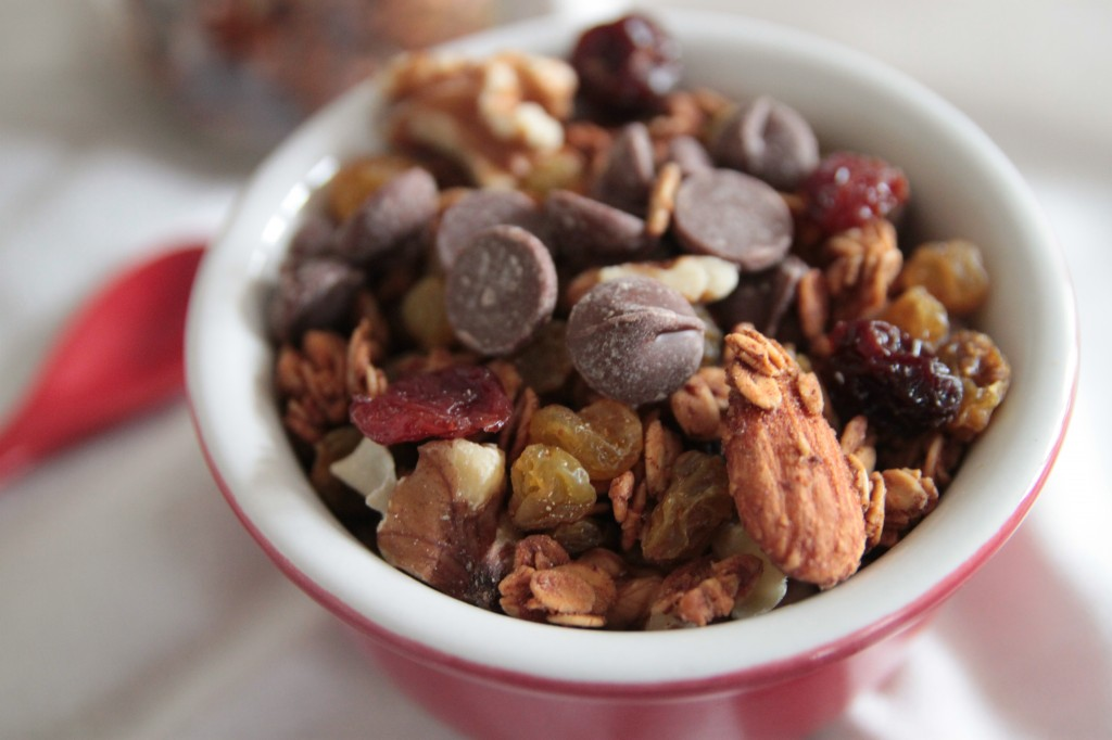 spiced raisin chocolate granola 1