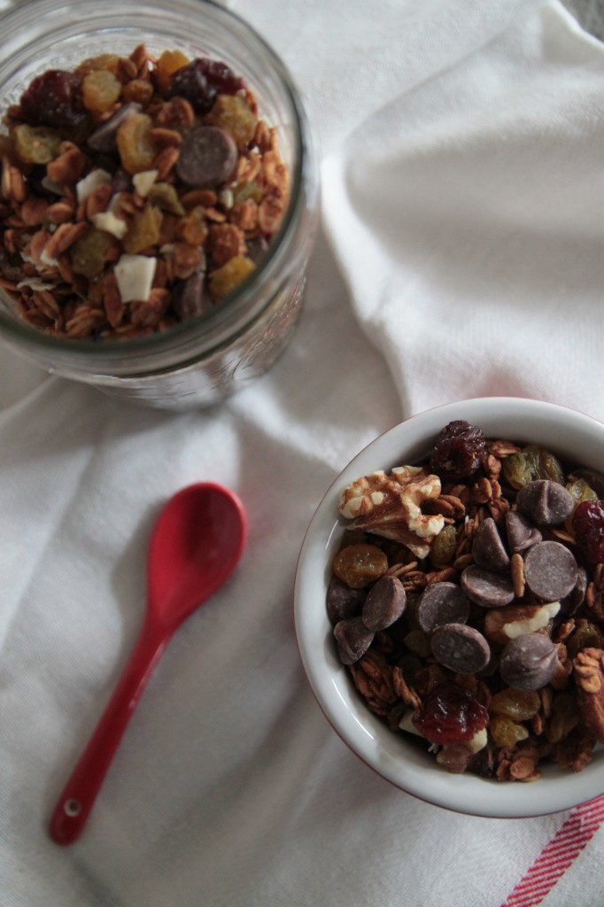 spiced raisin chocolate granola 2