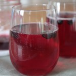 blueberry white wine spritzer 1