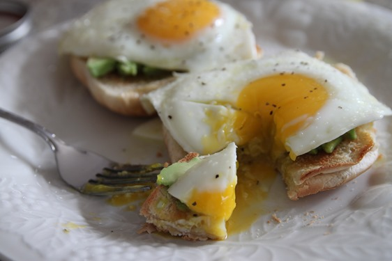 egg avocado toast 2
