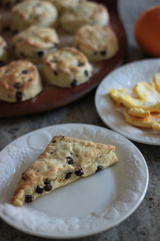 orange chocolate chip scones