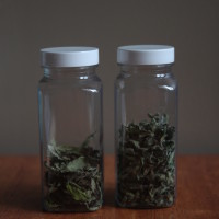 dried basil and oregano