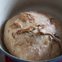easy crusty pan bread